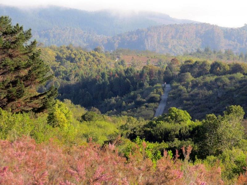 Property For Sale in Private Nature Reserve, Knysna 47