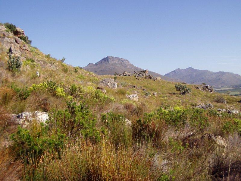 Property For Sale in Bainskloof, District Wellington 31