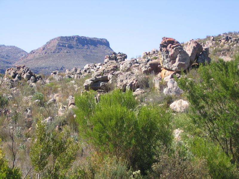 Property For Sale in Private Nature Reserve, Southern Cederberg 13