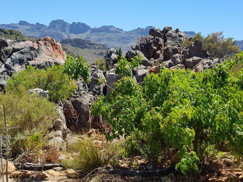 Property For Sale in Southern Cederberg, Cederberg Mountains 25