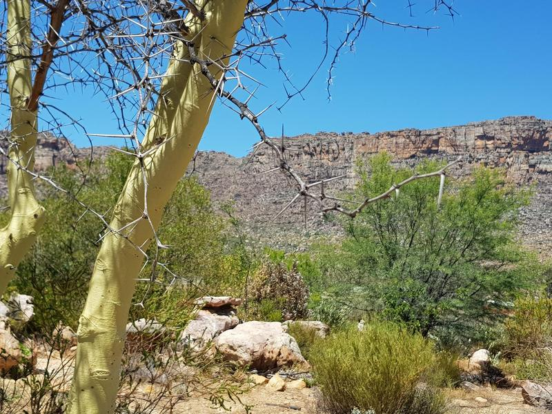 Property For Sale in Southern Cederberg, Cederberg Mountains 27
