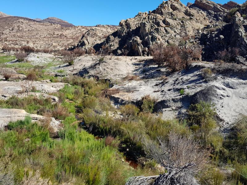 Property For Sale in Cederberg, Klein Cederberg 15