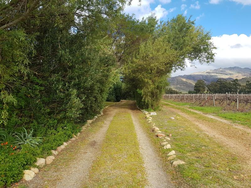 Property For Sale in Mount Bain Private Nature Reserve, Bainsklooof 49