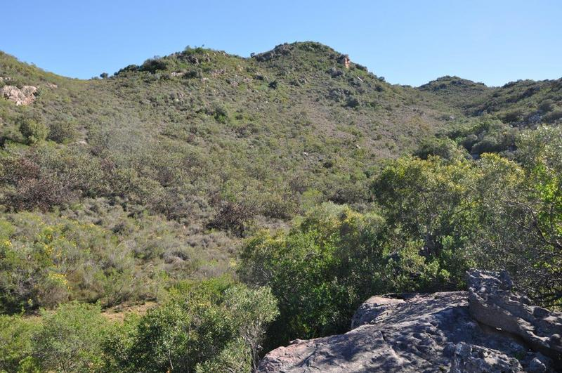 Property For Sale in Kapteinskloof, District Piketberg 37